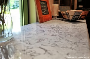 Spectrum-Stone-Designs-Silestone-Quartz-Roanoke-Countertops-Lynchburg-Countertops-Charlottesville-Countertops-Granite-Marble-Quartz
